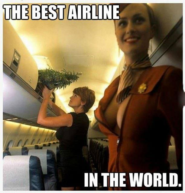 Best Airline In The World