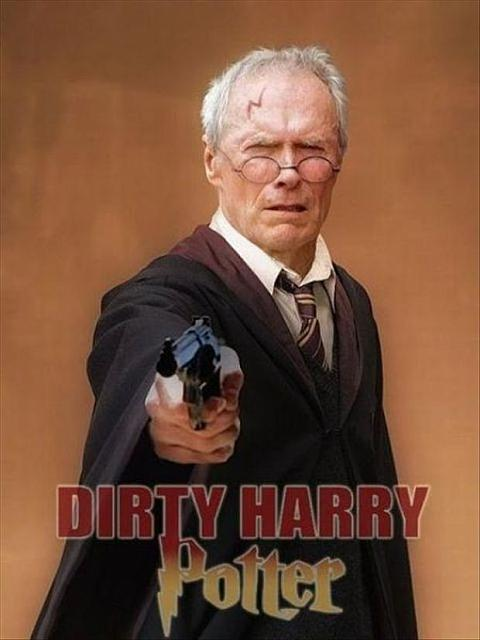 dirty-harry-potter-funny-pictures