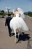 wedding-pictures-7