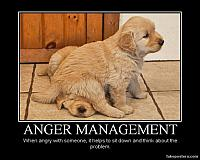 funny-quotes-anger-management